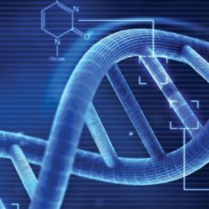 Základy genetiky I.